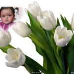 Fotomontaje online tulipanes