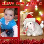 El conejo 2011 de photomontager.com te desea un Feliz 2012