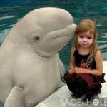 Hacer fotomontaje infantil con un delfín inteligente