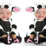 Montaje infantil en el disfraz de dos vacas