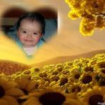 Marco corazón entre un amarillo de girasoles