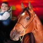 Fotomontaje gratis junto a un caballo