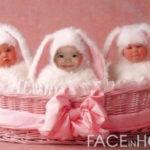 Crear fotomontajes infantiles, con el disfraz de un conejo