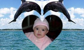 fotomontaje-delfines
