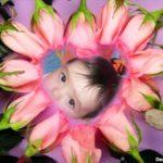 Hacer fotomontaje en un corazón de rosas