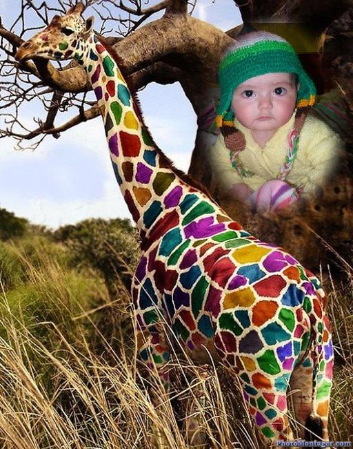 fotomontaje-jirafa