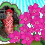 Marco para fotos con bellísimas flores naturales