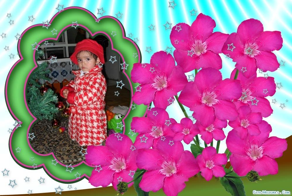 marco-flores