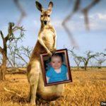 Editar una foto con un canguro