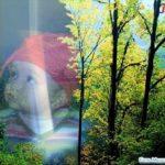 Realiza fotomontajes online con paisajes