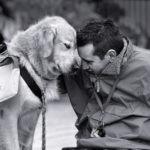 Fotos de perros con seres humanos, para tocar el corazon