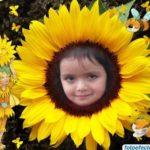 Personaliza tu foto en una flor de girasol