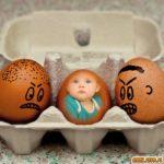 Decora tus fotos gratis con huevos