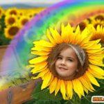 Flor de girasol para editar fotos