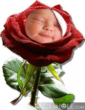 Fotomontaje En Una Rosa Por El Día De La Madre Programas Para