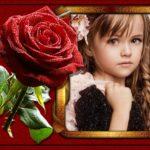 Fotomontaje para crear gratis en una rosa roja