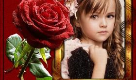 Marco de fotos con flores rojas