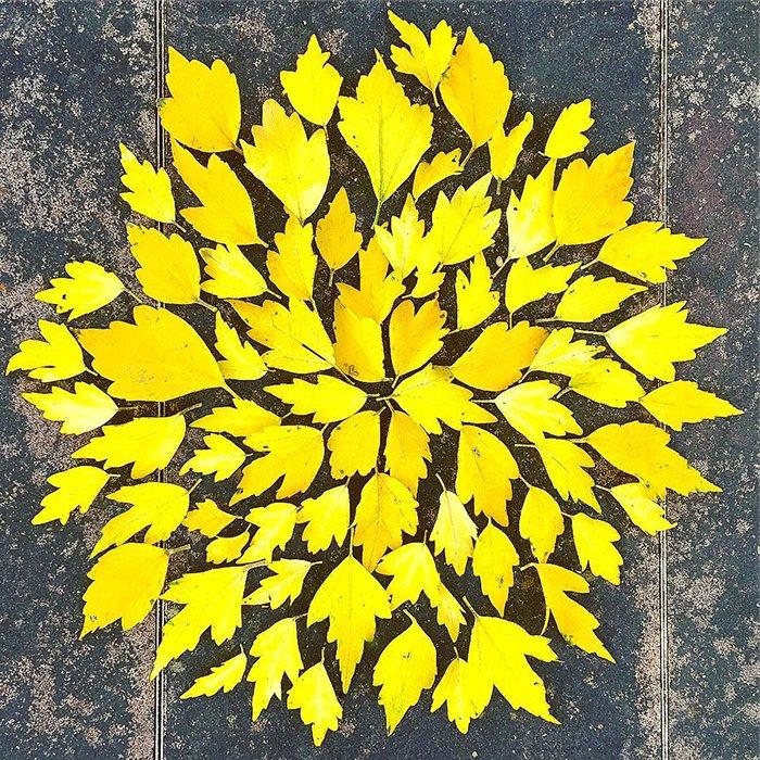 arte de hojas caidas-3