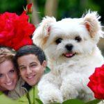 El más tierno fotomontaje de amor para compartir