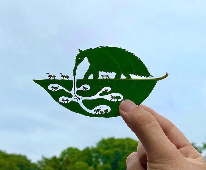 Arte en hojas de árboles. | Programas para editar fotos